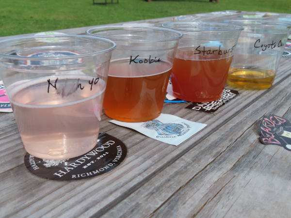 A Flight from the Pavilion Tap Room