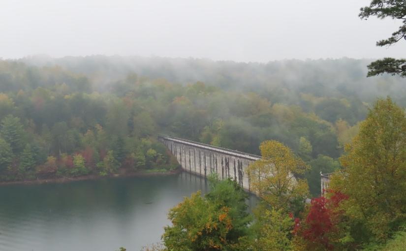 Rain and Leaves at PhilpottLake