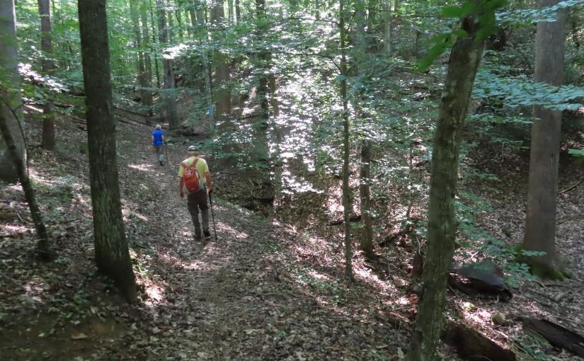 Another Hidden Gem: Laurel Ridge Trail and Twin RidgePark